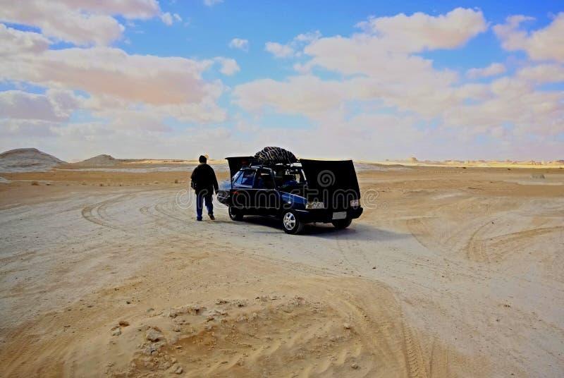 Eenzaam in woestijn royalty-vrije stock foto