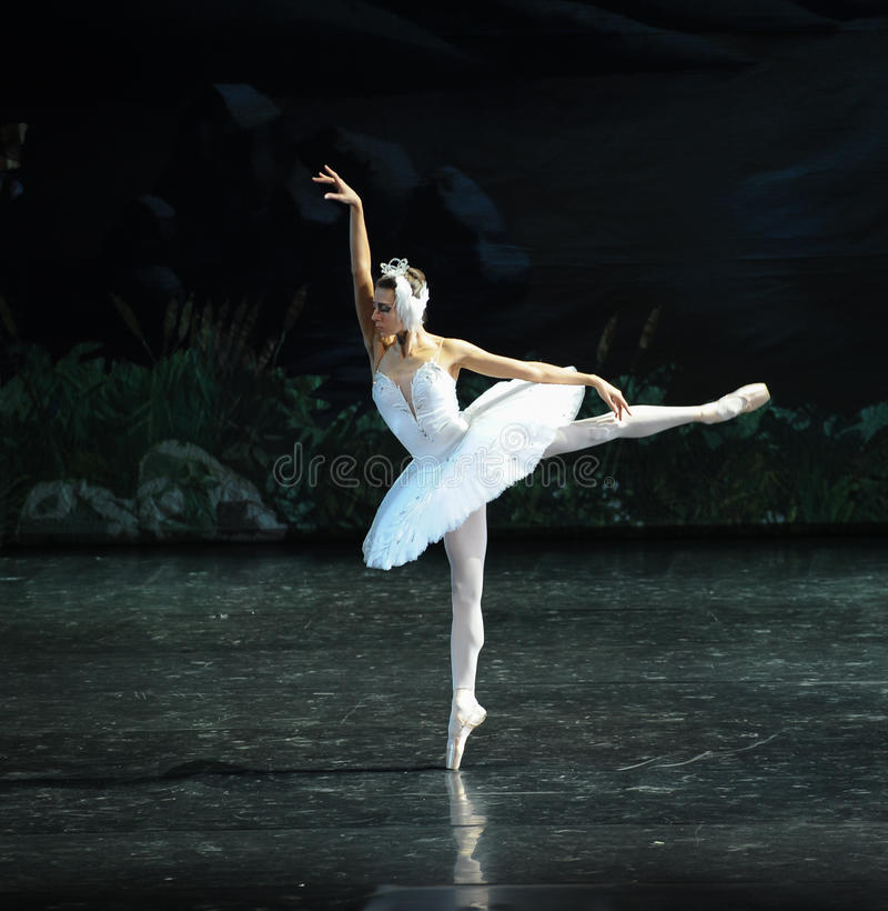 Eenzaam zwaan-Ballet Zwaanmeer royalty-vrije stock foto