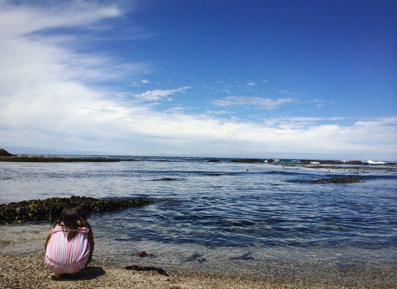 Eenzaamheid bij kust stock foto