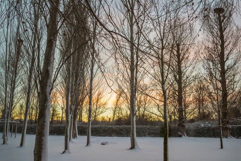 Eenzaamheid en Parkbank met Lege Sneeuw royalty-vrije stock foto