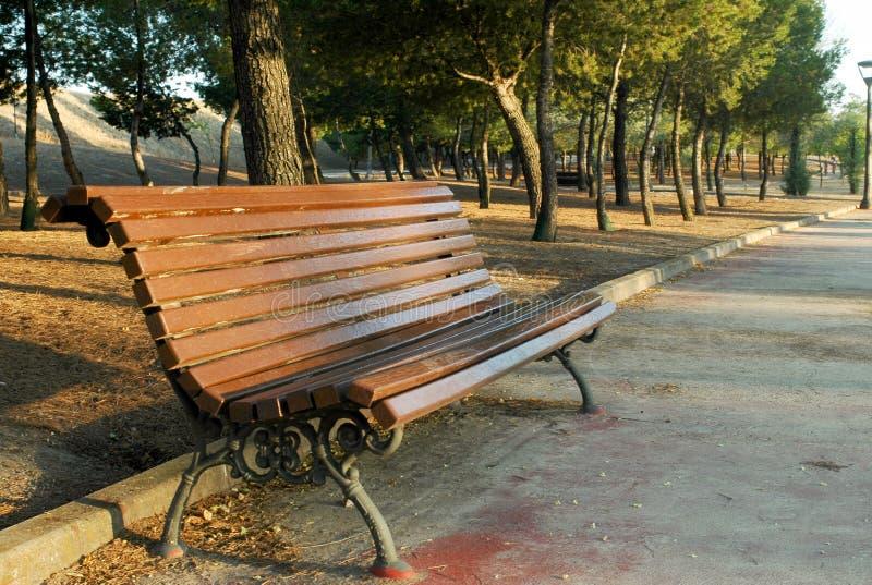 Eenzame bank in het park stock foto's