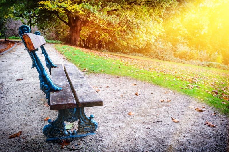 Eenzame bank in het park van de de herfststad stock fotografie
