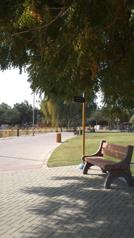 Eenzame bank op een zonnige dag stock foto