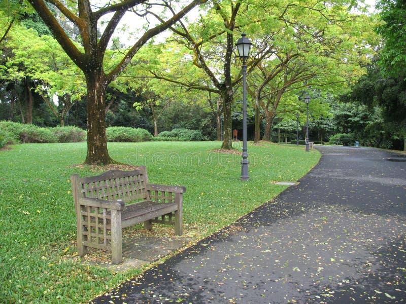 Eenzame bank in park stock afbeeldingen