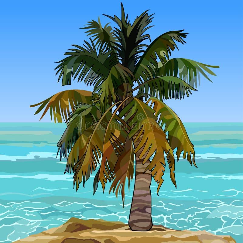 Eenzame bontpalm op de kust van het azuurblauwe overzees royalty-vrije illustratie