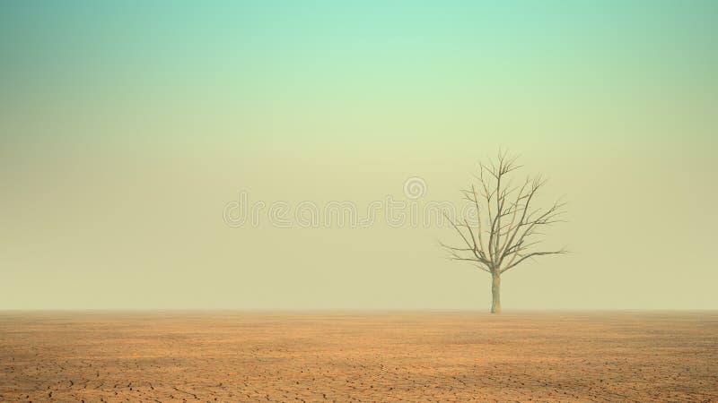 Eenzame boom in een woestijn stock fotografie