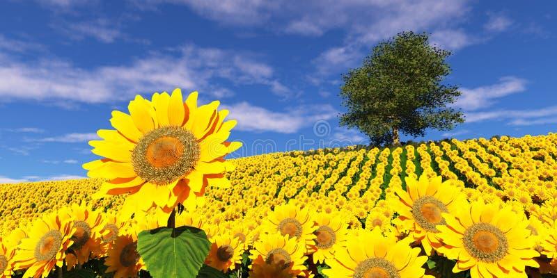Eenzame boom op een gebied van zonnebloemen onder een bewolkte hemel stock fotografie