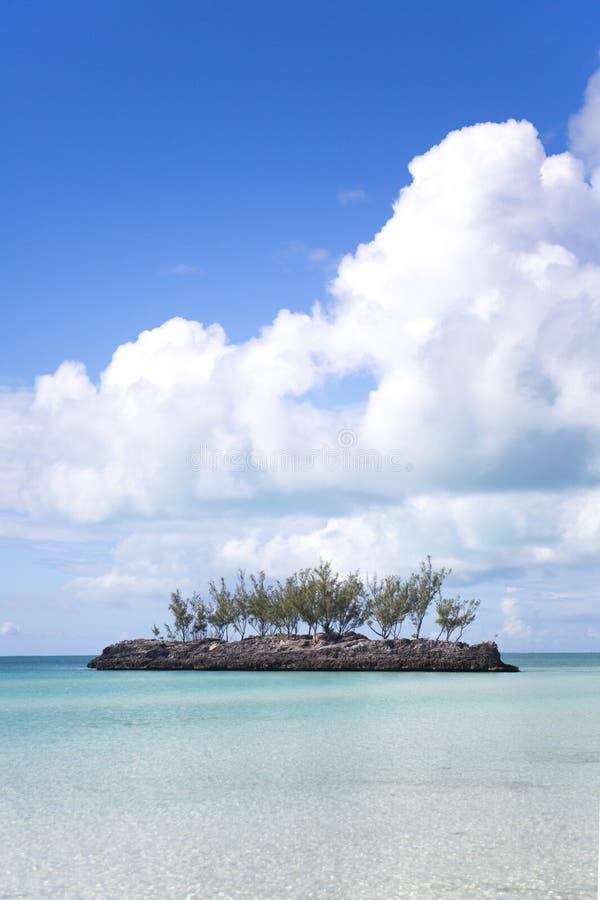 Eenzame cay met bomen royalty-vrije stock afbeelding