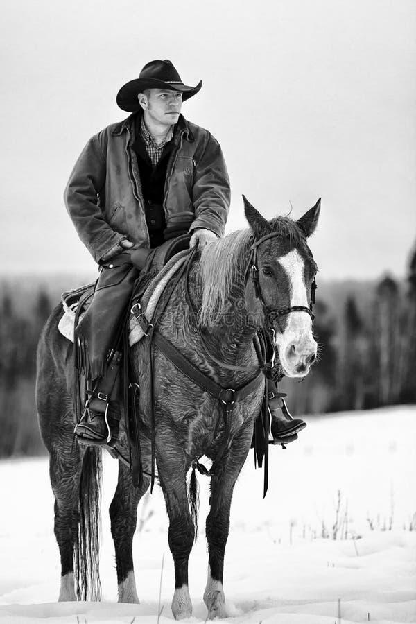 Eenzame cowboy in paard stock foto's