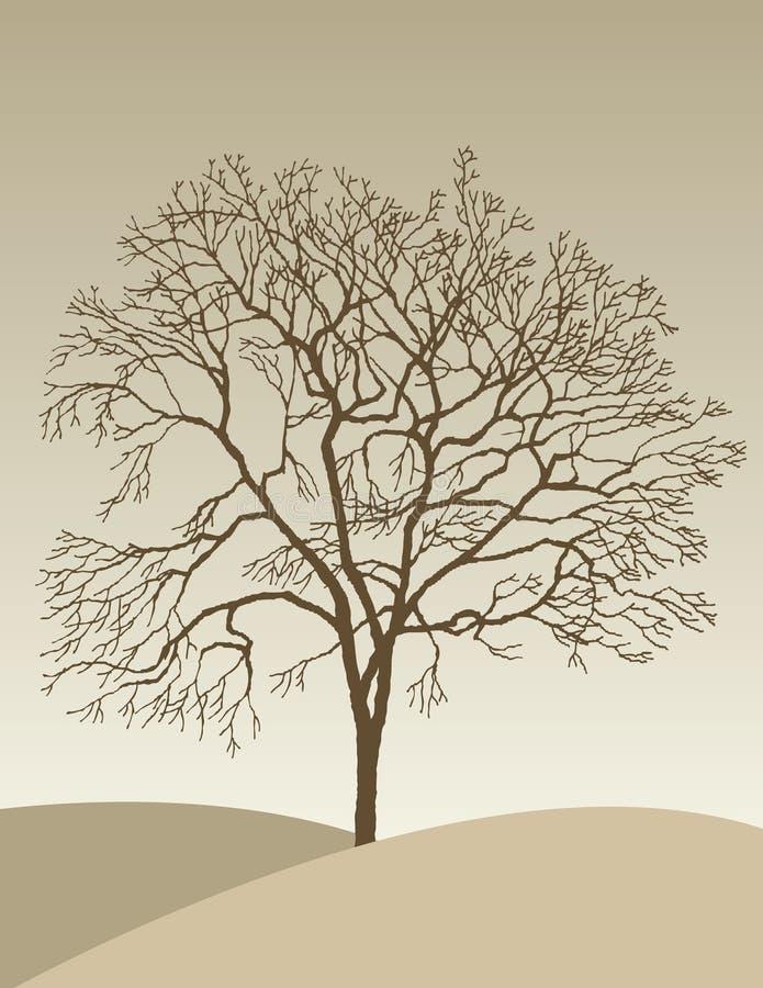 Eenzame de herfstboom royalty-vrije illustratie