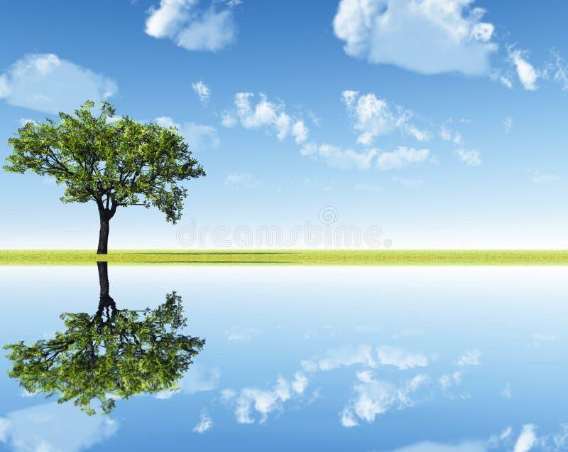 Eenzame die boom in het water wordt weerspiegeld vector illustratie