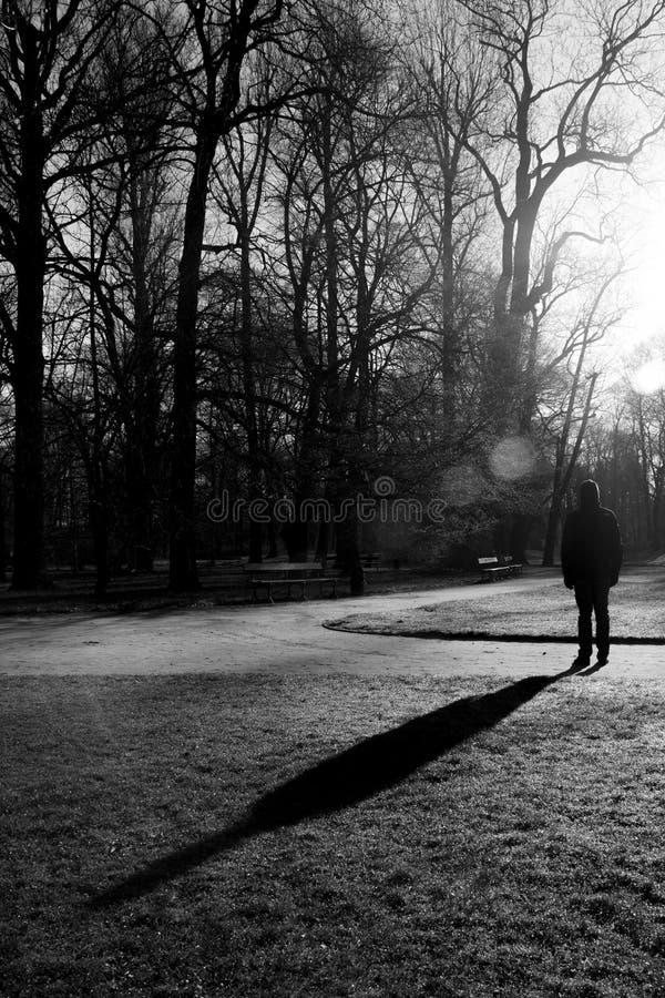 Eenzame gang in Lazienki-Park, Warshau, Polen stock foto