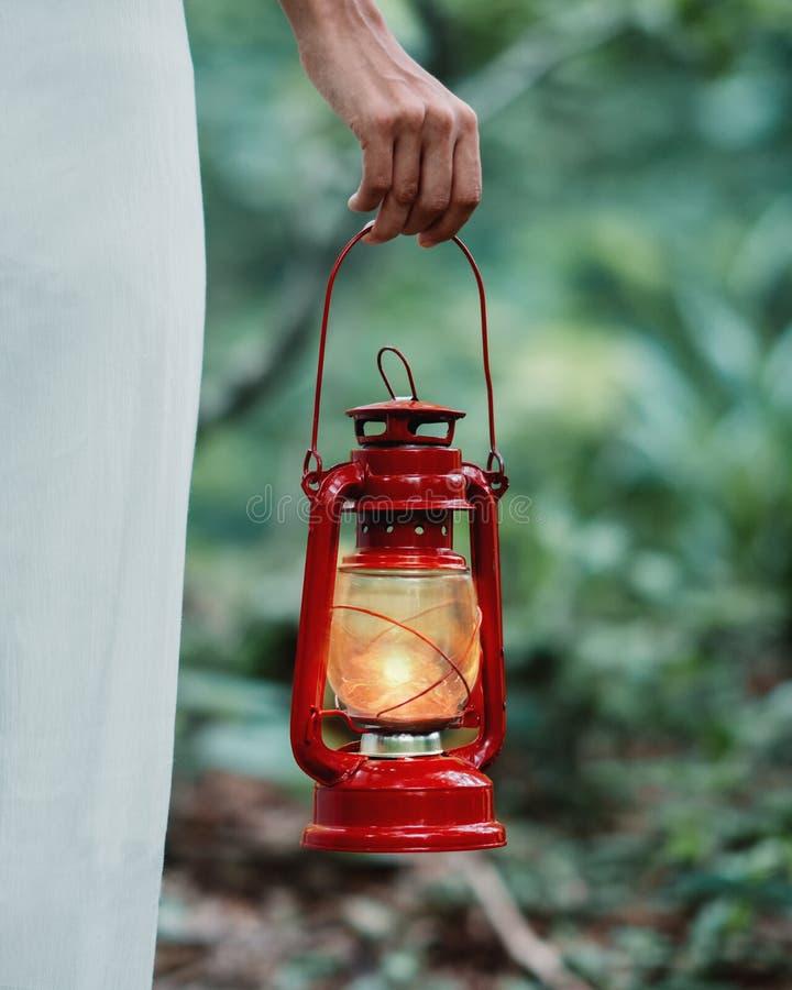 Eenzame jonge vrouw die in bos bij nacht met gaslamp lopen royalty-vrije stock fotografie