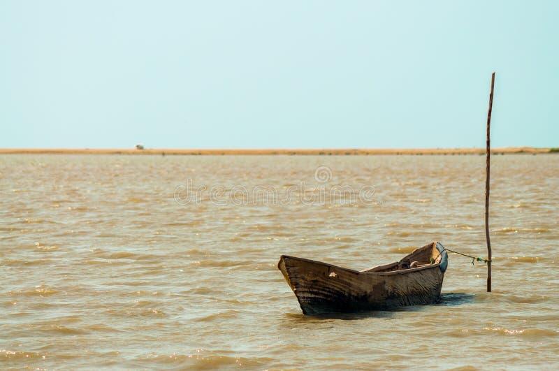 Eenzame Kano royalty-vrije stock foto