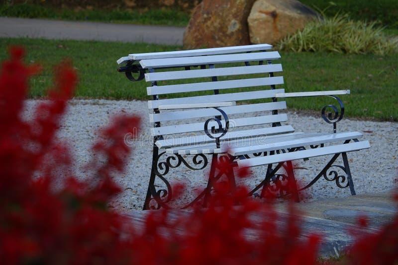 Eenzame lege bank in openbaar park voor rust stock fotografie