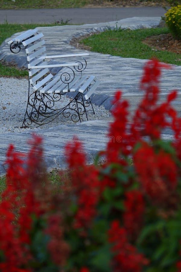 Eenzame lege bank in openbaar park voor rust royalty-vrije stock foto