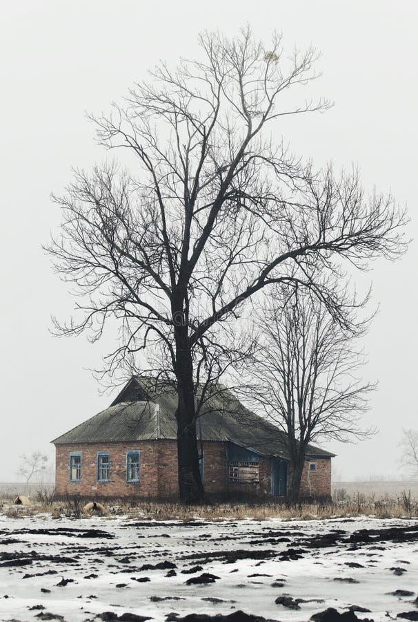 Eenzame oude huis en boom stock foto's