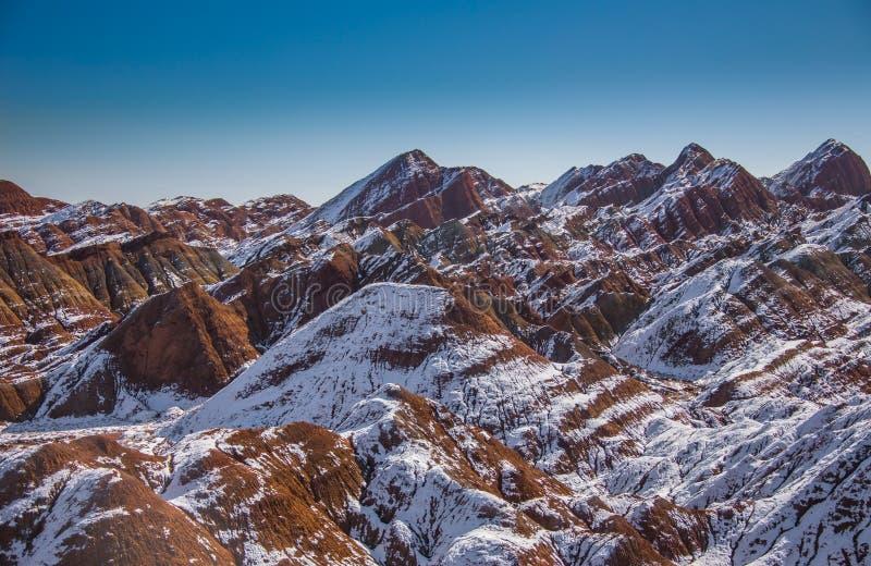 Eenzame pijnboomboom op de rand van Bryce Canyon stock afbeeldingen