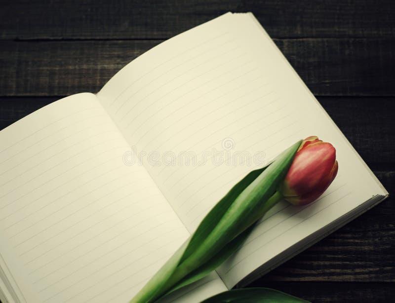 Eenzame rode tulp en open leeg notitieboekje op donkere houten planken royalty-vrije stock foto