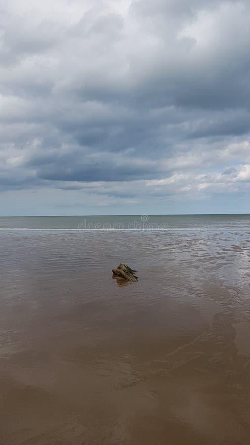 Eenzame Rots in Overzees bij Trimmingham-Strand royalty-vrije stock afbeeldingen