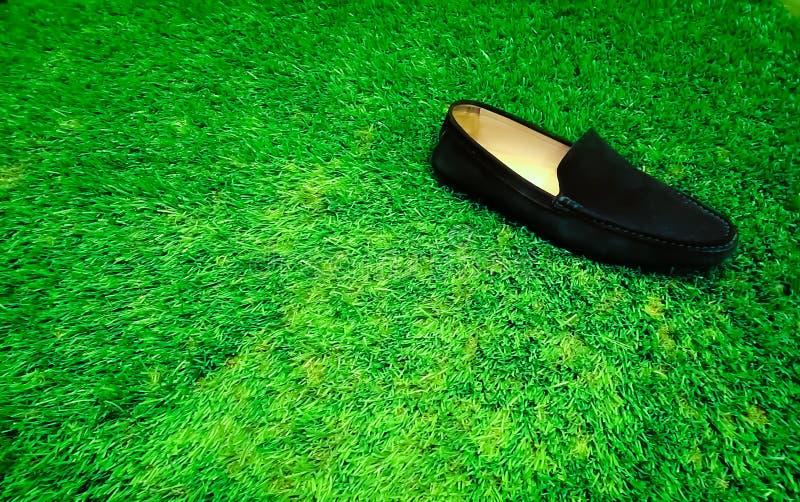 Eenzame schoen royalty-vrije stock foto