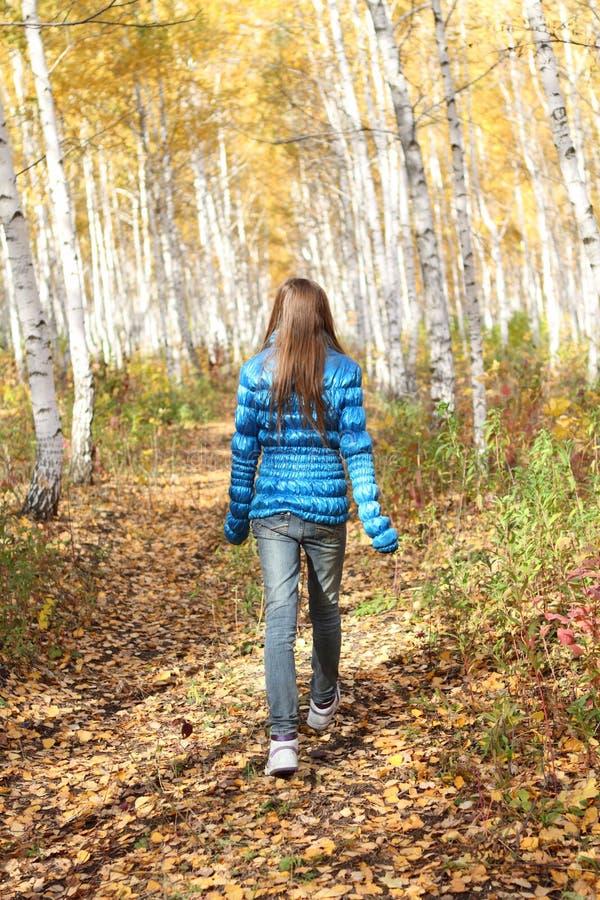 Eenzame tiener in de herfst stock fotografie