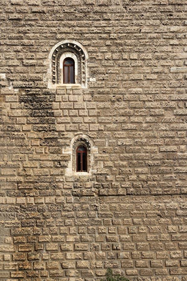 Eenzame vensters op een groot klooster stock fotografie