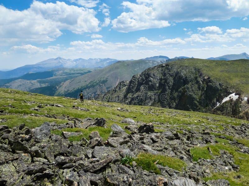 Eenzame Wandelaar dichtbij Hallet-Piek in Rocky Mountain National Park royalty-vrije stock foto