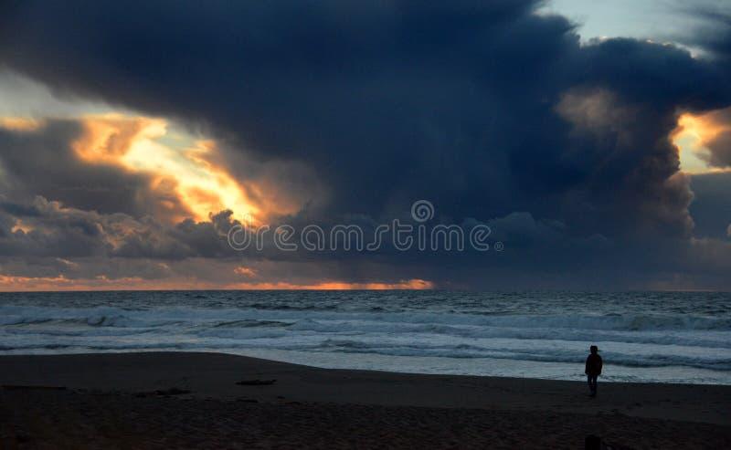 Eenzame Zonsondergang op California& x27; s Punt Reyes National Seashore royalty-vrije stock foto's