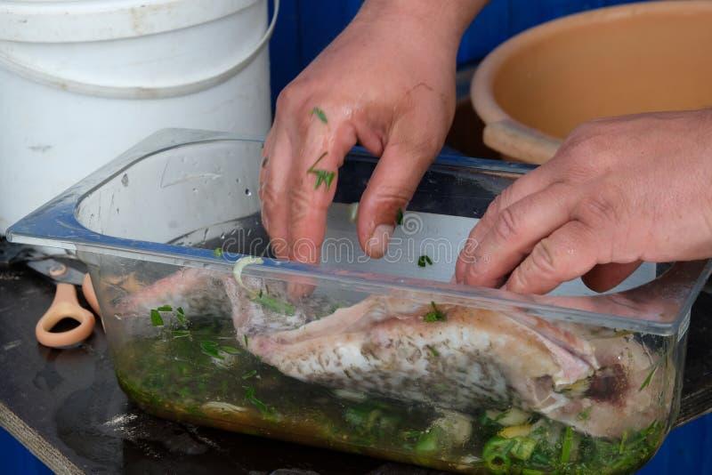 Eerst zouden de vissen de marinade moeten doorweken stock foto's