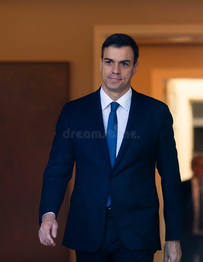 Eerste minister van Spanje Pedro Sanchez stock afbeeldingen