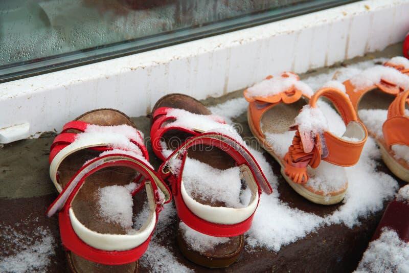 Eerste sneeuw stock foto