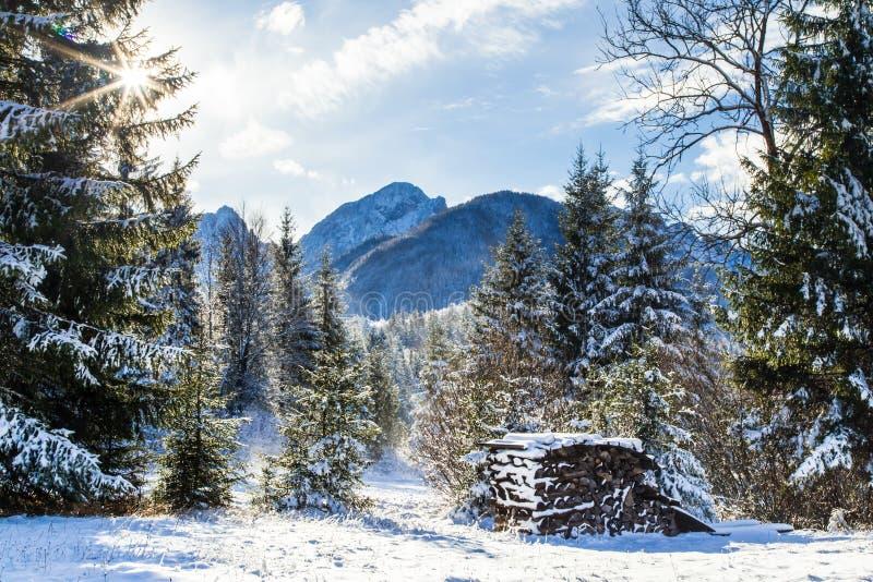 Eerste sneeuw bij de berg stock afbeeldingen