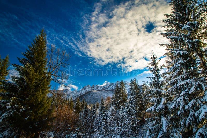 Eerste sneeuw bij de berg royalty-vrije stock foto's