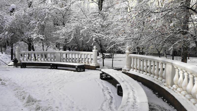 Eerste sneeuw in het stadspark stock afbeelding