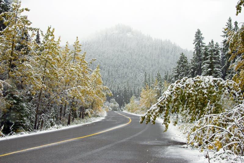 Eerste sneeuw op bergweg stock foto's