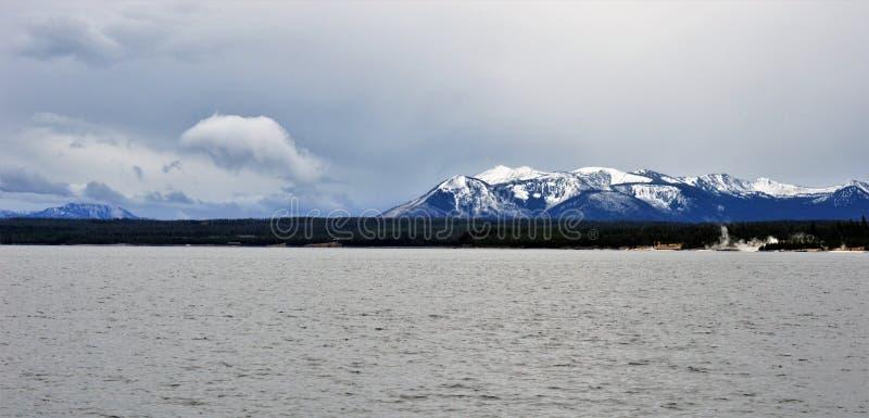 Eerste Sneeuw in Yellowstone stock afbeeldingen