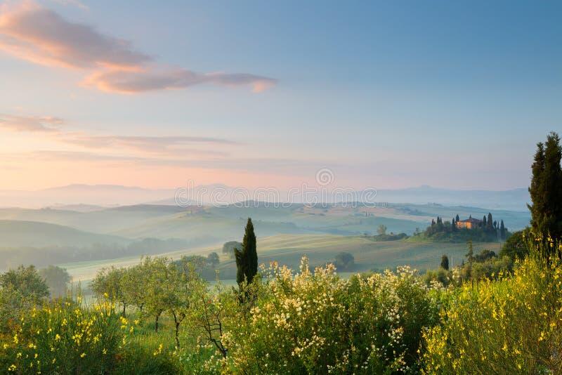 Eerste zonlicht in Toscaanse heuvels royalty-vrije stock fotografie