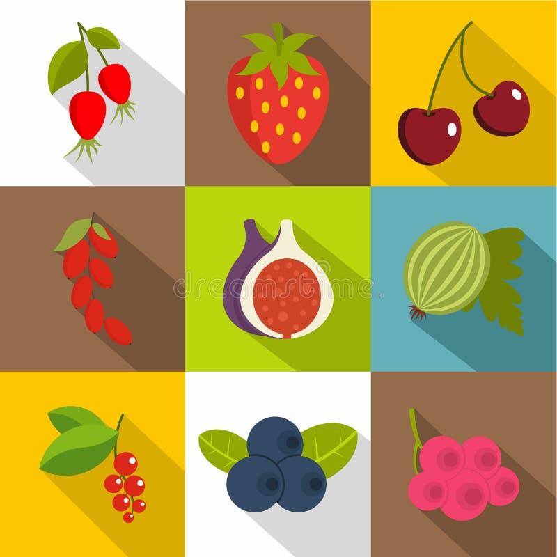 Eetbaar geplaatste fruitpictogrammen, vlakke stijl royalty-vrije illustratie