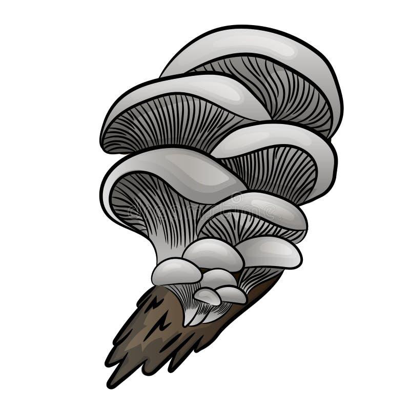 Eetbaar paddestoel vlak pictogram oester stock illustratie
