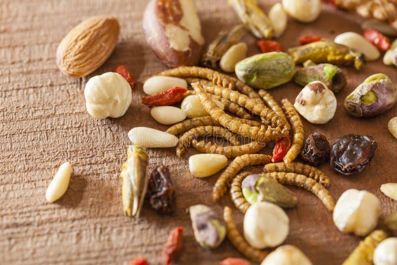 Eetbare insecten en noten royalty-vrije stock fotografie