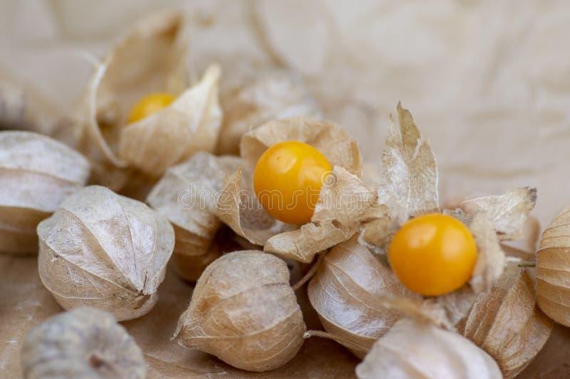 Eetbare smakelijke physalis oranjegele vruchten van Physalisperuviana in droge schillen op gevouwen document royalty-vrije stock fotografie