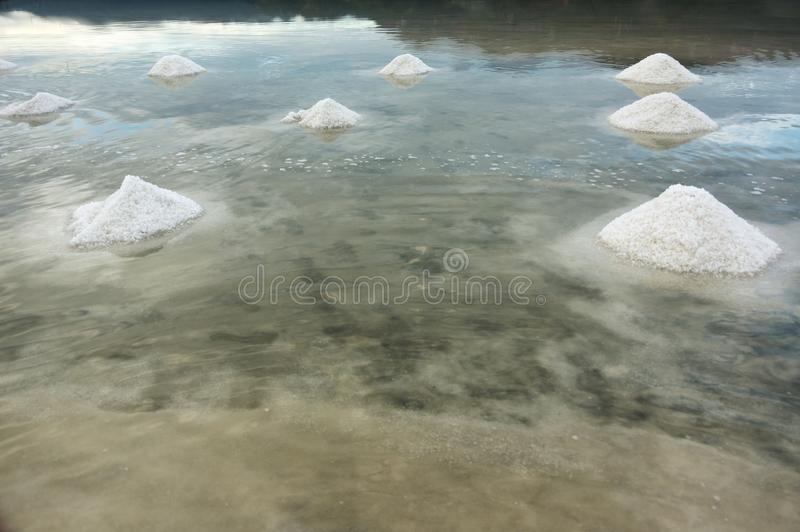 Eetbare zoute productie, kruiden stock foto