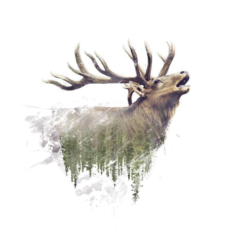 Efecto de los ciervos y de Forest Watercolor Double Exposure sobre el fondo blanco ilustración del vector
