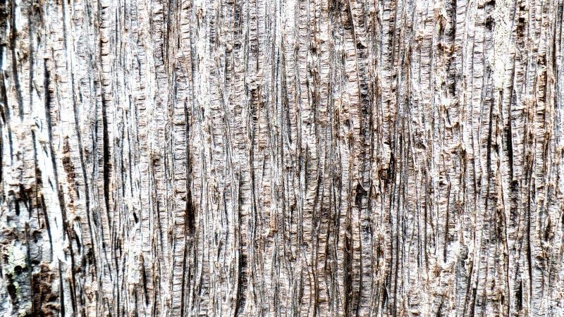 Efecto de madera imagenes de archivo