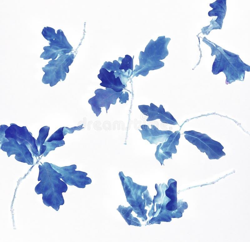 Efeito digital da textura azul abstrata do fundo da cor das folhas de outono ilustração royalty free