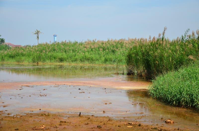 Efeitos ambientais dos produtos químicos e dos metais pesados no solo foto de stock