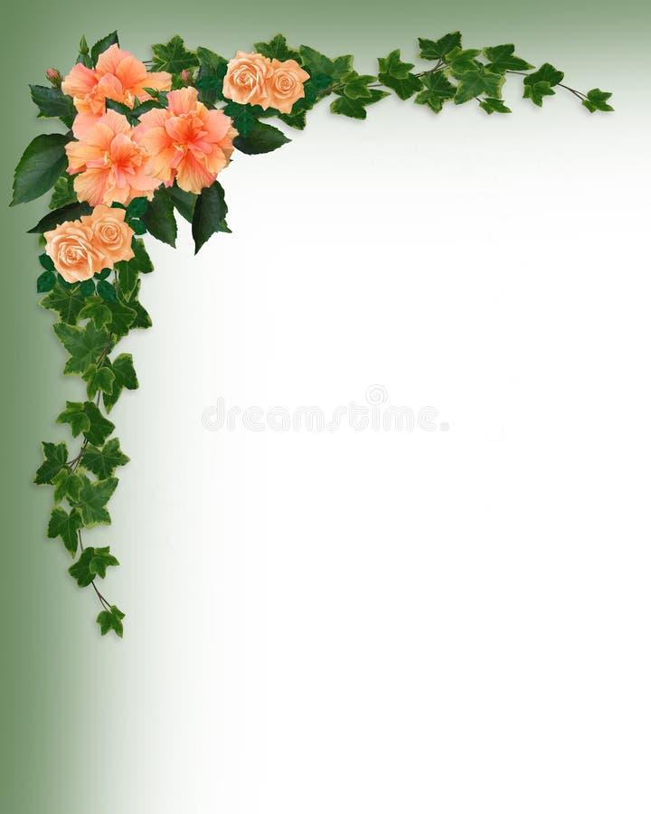 Efeu-, Hibiscus-und Rose-Rand lizenzfreie abbildung