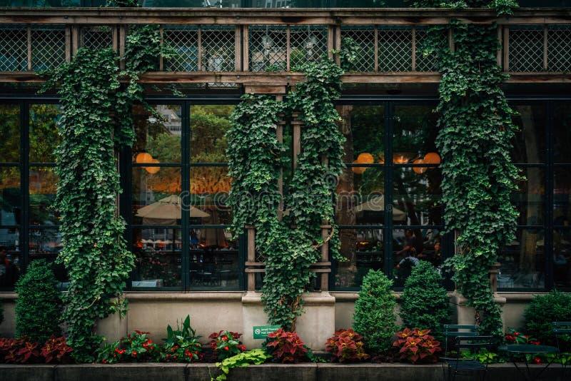 Efeu und Architektur bei Bryant Park, in Midtown Manhattan, New York City stockbild