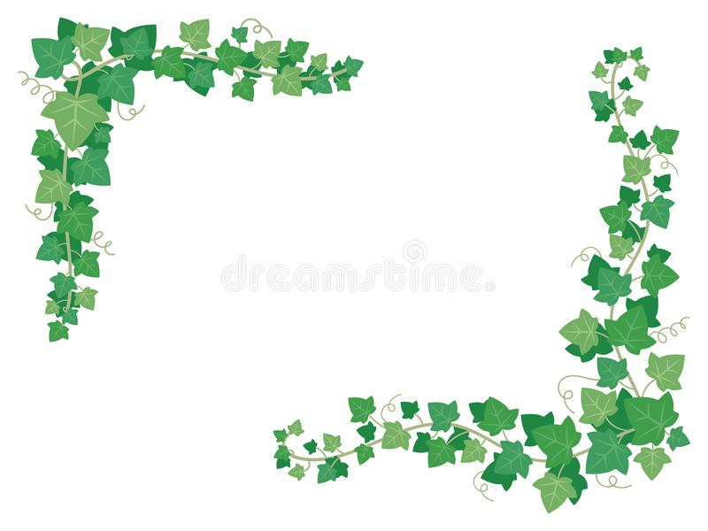 Efeugrünblätter auf Rahmenecken Dekorative Traubenanlagen, die an der Gartenwand hängen Blumenrahmendekorationsvektor vektor abbildung